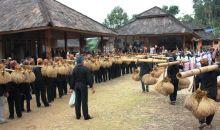Menyerap Kearifan Lokal Seren Taun di Desa Citorek Tengah