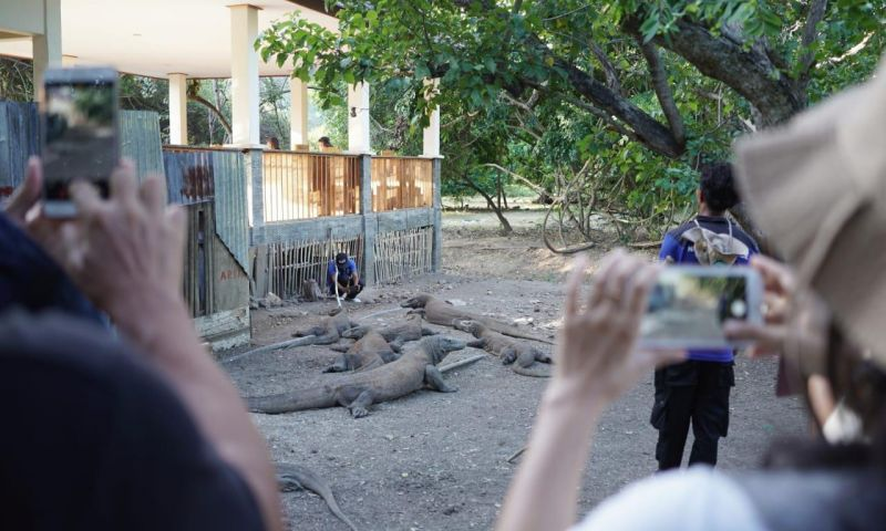 Labuan Bajo Diminta Perhatikan Jumlah Maksimal Pengunjung