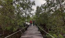 Jembatan Wisata Batu Limau Diminati Wisatawan