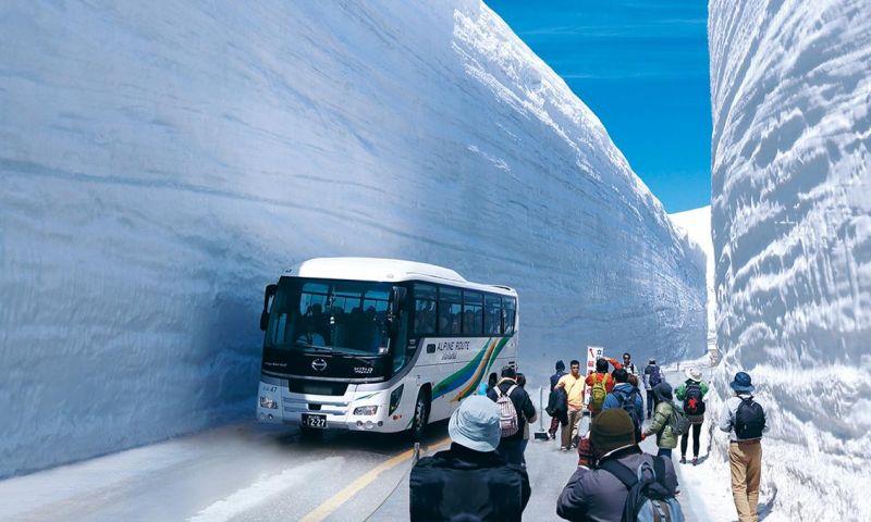 Menikmati Salju Musim Panas di Tateyama Jepang
