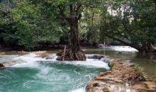Wow! Thailand Umumkan Penambahan 5 Taman Nasional Baru