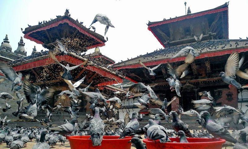 Nepal Menikmati Pertumbuhan Pariwisata