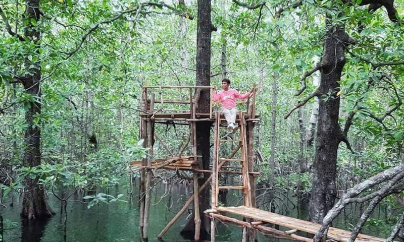 Berwisata Mangrove di Desa Petaling