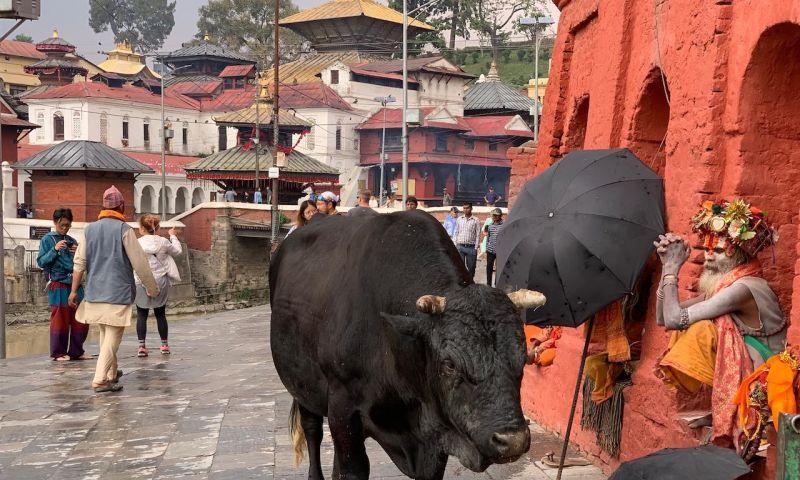 Panduan 7 Objek Wisata Lembah Kathmandu