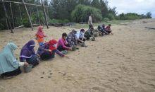 300 Tukik Dilepasliar di Pantai Paloh