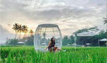 Svarga Bumi, Destinasi Instagramable di Sekitar Candi Borobudur