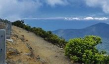 Pendakian Gede Pangrango Dibuka Kembali