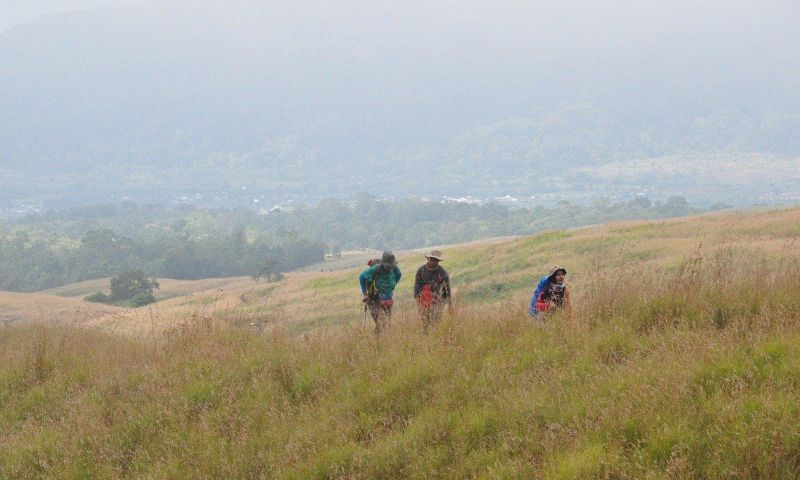 Ikuti Virtual Tour Pendakian Enam Gunung di Indonesia