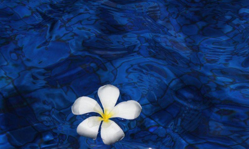 Selama Maret 2021, Bali hanya Dikunjungi 3 wisatawan mancanegara